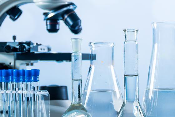 Het belang van een hoge biobeschikbaarheid